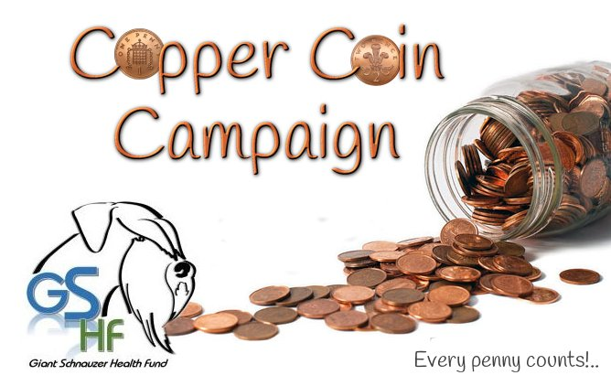 copper_coin_campaign