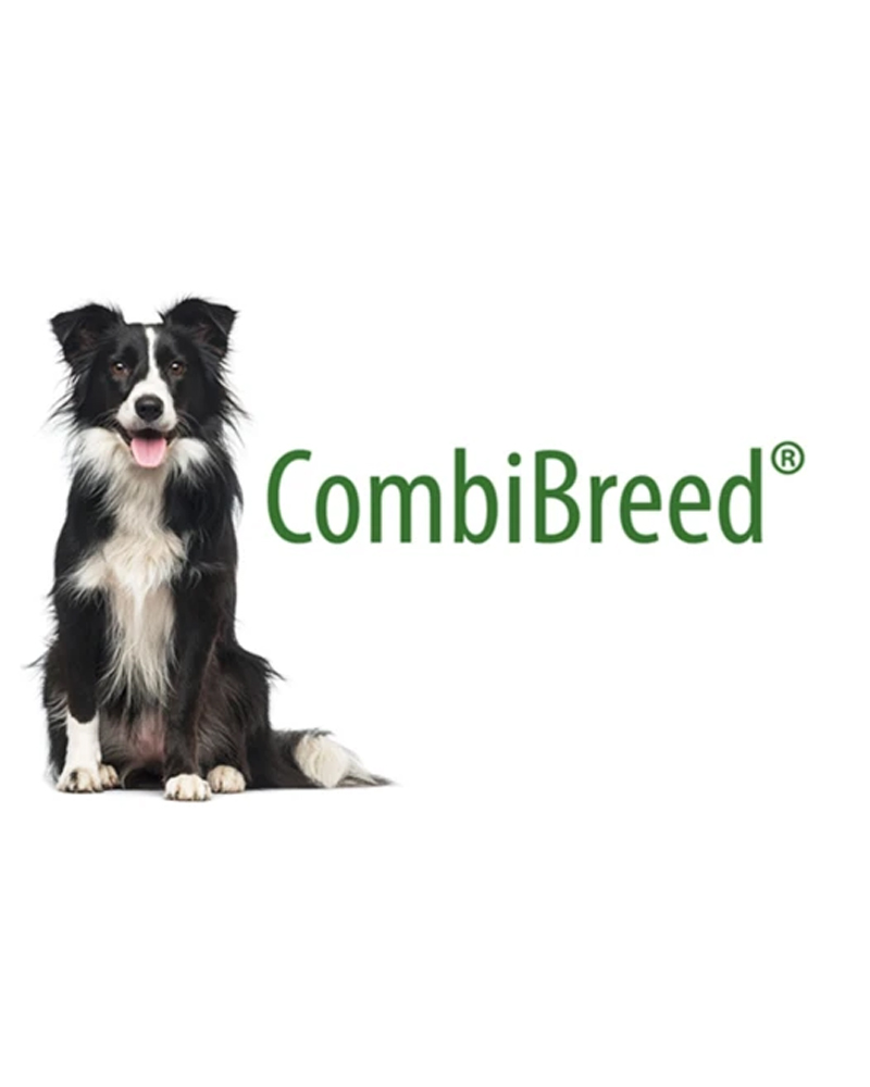 CombiBreed DNA Tests